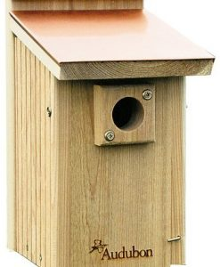 Audubon-Coppertop-Cedar-Wood-Bluebird-House-Model-NACOPBB-B000HHSDI2