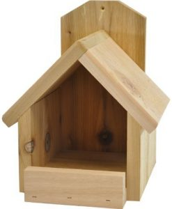 Backyard-Boys-Woodworking-BBW81-Cardinal-Nest-Box-B00931EQV6