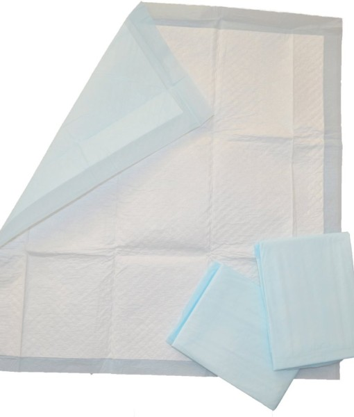 All-Absorb-100-Count-Training-Pads-22-Inch-by-23-Inch-B00NBGKSTS-2