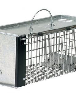 Havahart-X-Small-Professional-Style-One-Door-Animal-Trap-for-Chipmunk-Squirrel-Rat-and-Weasel-0745-B000BPAVCG